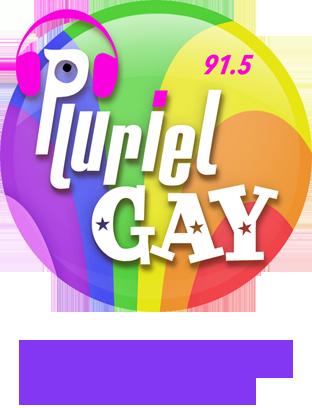 pluriel gay